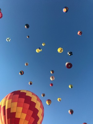 NJ Balloon Festival 2